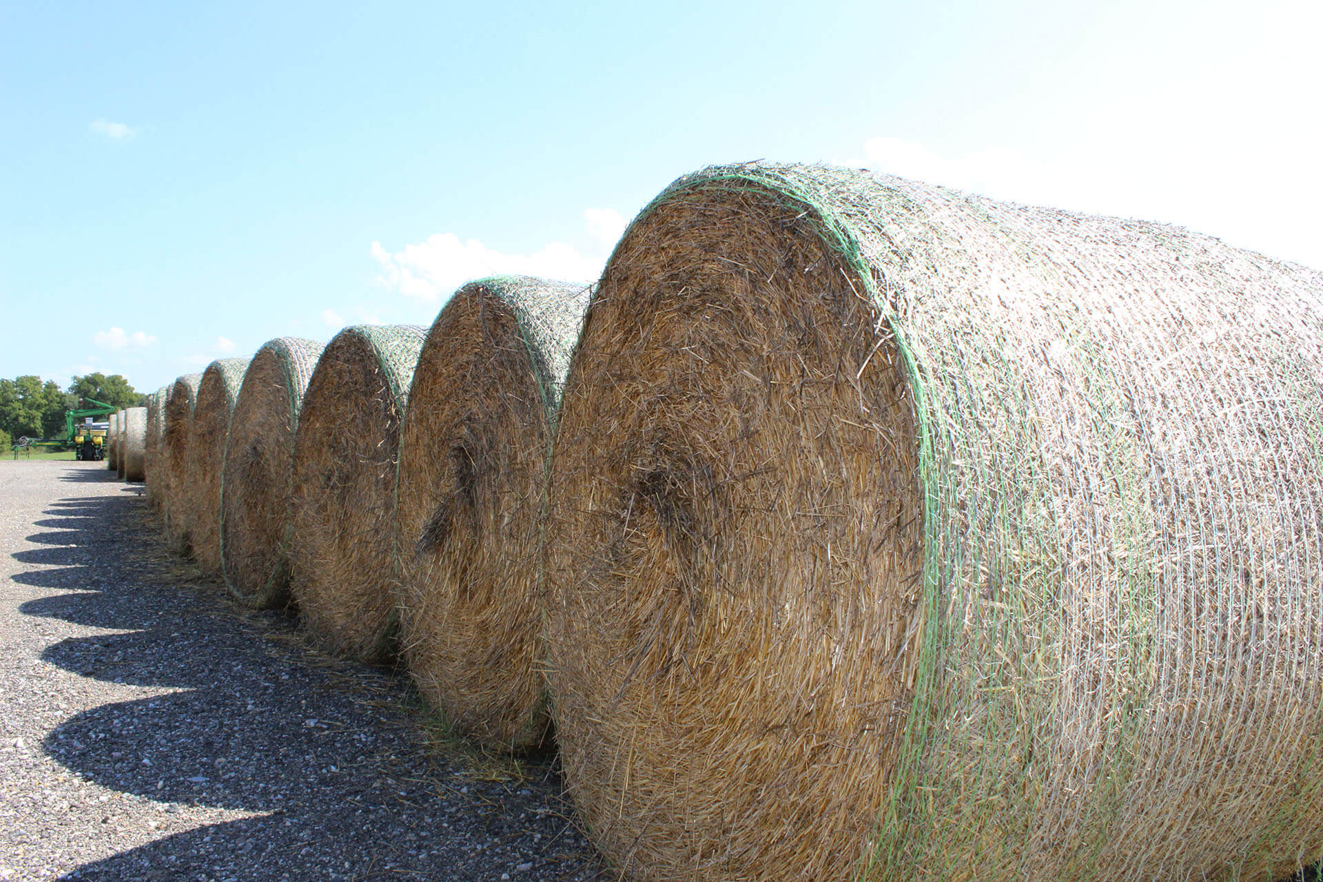 Bales in a Row ©Murphy Farms 2018
